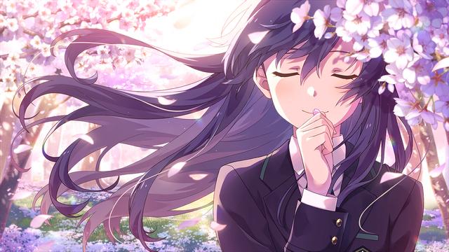 花桜に惹かれて 如月 千早1