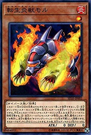 天成炎獣モルの画像4aPg3p5