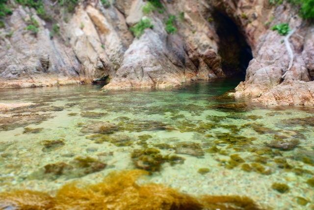 モバマスデレステの画像jOFm8rA