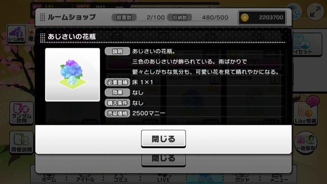 IMG_6800