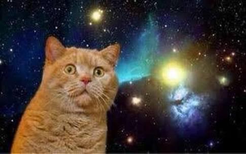 夢見りあむ 宇宙猫W5nzYVH