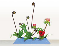 haruko-ikebana