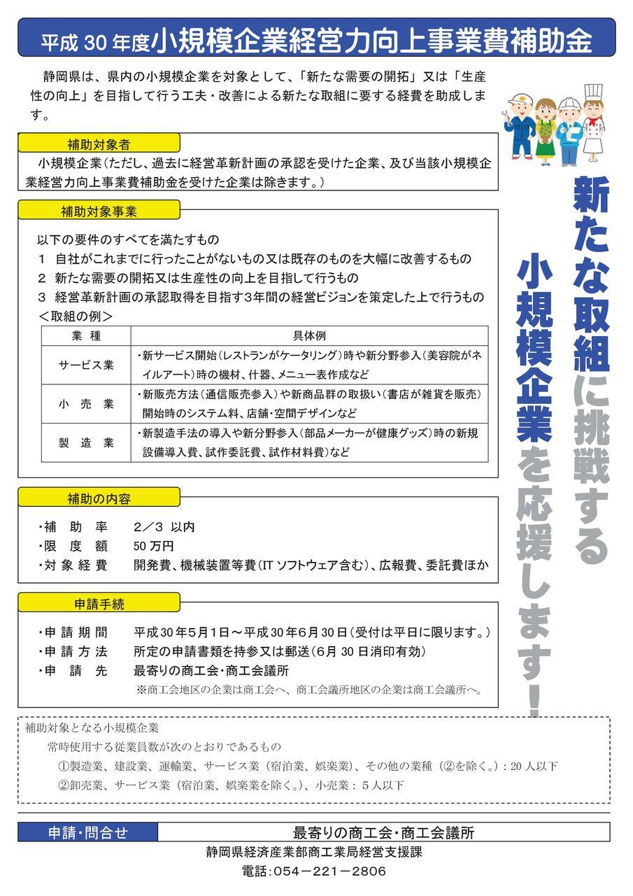 04-1+追記版_H30小規模企業経営力向上事業費補助金_チラシ(県提供)