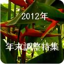 年末調整特集2012