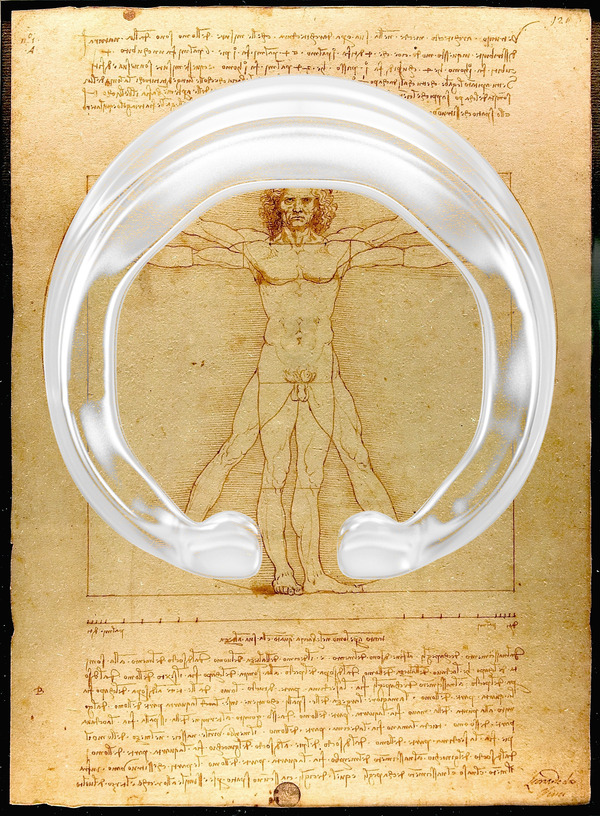マイピース人体図