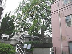 山王観音堂01-3