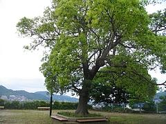 どんの山公園02