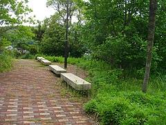 どんの山公園02-2