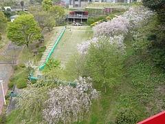 中尾城公園04-2