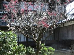 鍋島邸02