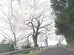 和三郎公園04-2