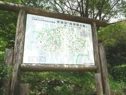 多良岳横断道路02