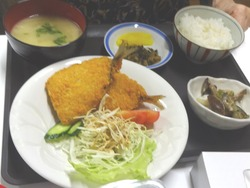 ひよこ食堂02-5