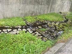小ヶ倉ダム02-2