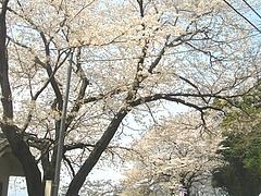 和三郎公園03-4