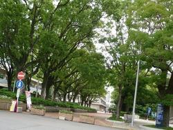 長崎大学01-2
