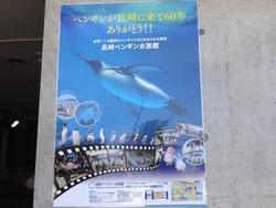 ペンギン水族館03-1
