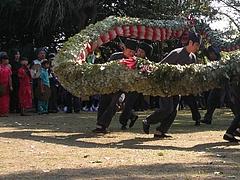 角上蛇踊01-4