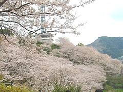 中尾城03-2