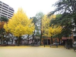 瓊の浦公園01-2