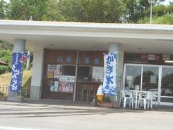 山茶花高原01-3