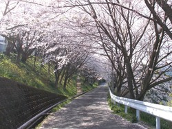 三川公園01-4