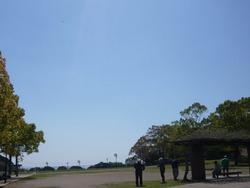 稲佐山01-1