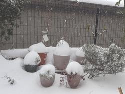 雪03-2
