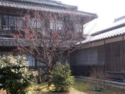 鍋島邸02-8
