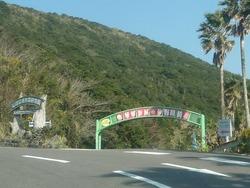亜熱帯植物園01