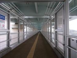 新西海橋01-3