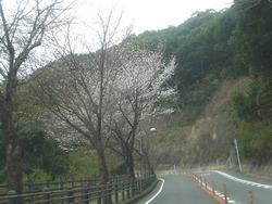 稲佐山01-4