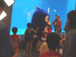 ペンギン水族館02