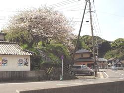 大瀬戸02-3