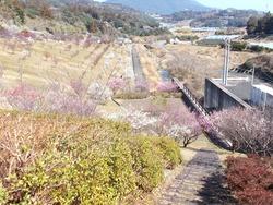 宮崎ダム01-2