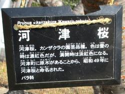 久原公園02