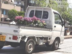 中島川01-4