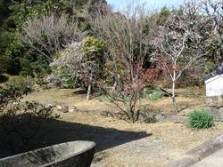鍋島邸01-8