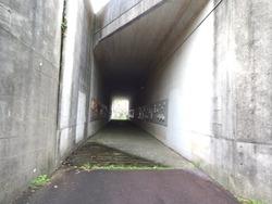 西山ダム下流公園01-3