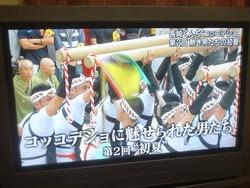 コッコデショ・テレビ