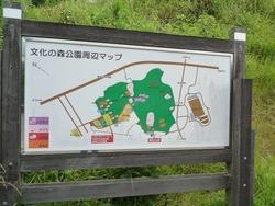 文化の森01