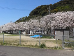 小ヶ倉水園01-2