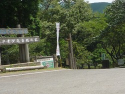 多良岳横断道路01-2