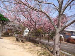 久原公園01-2