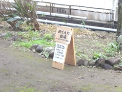 松原おくんち04