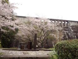 小ヶ倉水園02-3