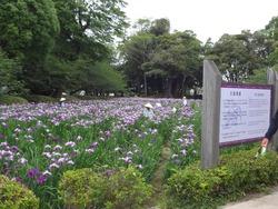 大村公園01-3