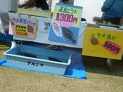帆船まつり03-8