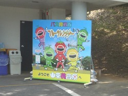 山茶花高原01-4