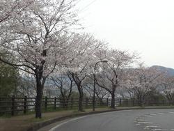 稲佐山01-6